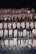 Sally Barnett - Smoked Kippers from...