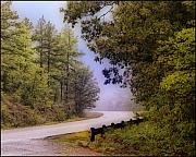 Smokey Mountain Drive Metal Prints - Smokey Mountain Road Metal Print by Shirley Dawson