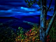 Smokey Mountains Photo Posters - Smokey Mountain Still Life Poster by William Jones