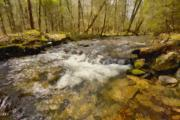 Smokey Mountains Digital Art - Smokey Mt. stream by Paul Bartoszek