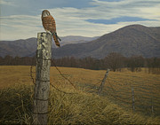 Barbed Wire Paintings - Smoky Mountain Hunter-American Kestrel by James Willoughby III