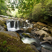 North Carolina Mountains Posters - Smoky Mountain Waterfall Poster by Matt Tilghman