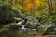 Great Smokey Mountains Prints - Smoky Mountain Waterfall Print by Rich Franco
