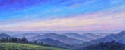 Appalachian Mountains Paintings - Smoky Mountain Wildflowers - Panorama by Jeff Pittman