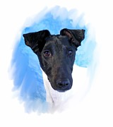 Fox Digital Art - Smooth Fox Terrier 960 by Larry Matthews