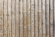 Timber Posts Prints - Smooth wood pine poles Print by Aleksandr Volkov