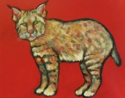 """bobcat "" Paintings - Smug Bobcat by Carol Suzanne Niebuhr"