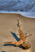 Beach Photograph Posters - Snag And Surf II Poster by Steven Ainsworth
