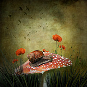 Manipulation Prints - Snail Pace Print by Ian Barber