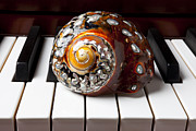 Bejeweled Posters - Snail shell on keys Poster by Garry Gay