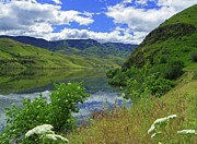 Wildflowers Mixed Media Posters - Snake River - Scenic Hells Canyon Poster by Photography Moments - Sandi