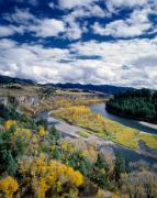 Leland Howard - Snake River in autumn