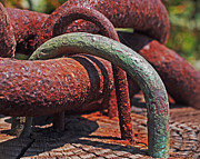 Sun Weathered Prints - Snaking Rust  Print by Rona Black