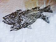 Gyotaku Prints - Snapper Print by William Fields