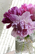 Floral Artist Framed Prints - Snickerhaus Peonies in a Vase Framed Print by Christine Belt