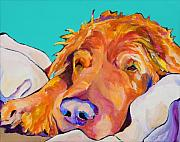 Sleeping Dog Framed Prints - Snoozer King Framed Print by Pat Saunders-White