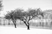 Schuylkill Prints - Snow Along the Schuylkill River Print by Bill Cannon