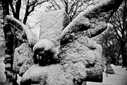 Angel Wings Photos - Snow Angel by Grebo Gray