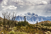 Superstition Framed Prints - Snow Atop The Superstitions Framed Print by Saija  Lehtonen