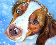 Spaniel Framed Prints - Snow Baby - Brittany Spaniel Framed Print by Lyn Cook