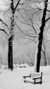 Philadelphia Park Prints - Snow Bench Print by Andrew Dinh