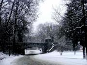 Black And White Photography Pyrography Metal Prints - Snow Blizzard - Rock Creek Parkway Washington DC Metal Print by Fareeha Khawaja