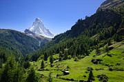 Matterhorn Prints - Snow-capped matterhorn Print by Mats Silvan