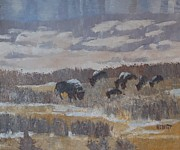 Bison Originals - Snow Covered Bison In Yellowstone Park by Philip Hewitt