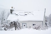 Snow Covered Village Prints - Snow-covered Cottage, Braemar, Scotland Print by Duncan Shaw