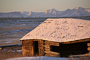 Old Cabin Photos - Snow covered Rocky Mountains in Alberta winter by Mark Duffy