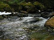 Robert Bissett - Snow Creek in Winter