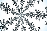 At Work Digital Art Prints - Snow Crystal Print by David Pyatt