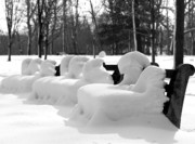 Park Benches Prints - Snow Cushions Print by Freda Sbordoni