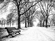 Black-and-white Reliefs Prints - Snow Day Print by Dominic Piperata