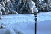 Paul SEQUENCE Ferguson             sequence dot net - Snow DAY