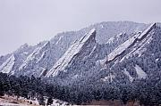 Flatirons Posters - Snow Dusted Flatirons Boulder Colorado Poster by James Bo Insogna