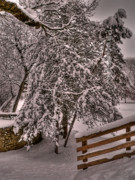 Freeport Prints - Snow Fence Print by David Bearden