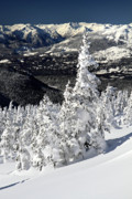 Whistler Photos - Snow Ghosts on Whistler Mountain by Pierre Leclerc