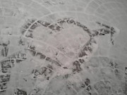Love  Pyrography Posters - Snow Heart 2012 Poster by Catherine Herbert