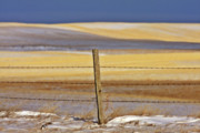 Panoramic Digital Art - Snow hills Saskatchewan by Mark Duffy