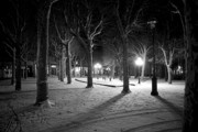 Vichy Framed Prints - Snow in Vichy central park Framed Print by Alexander Davydov