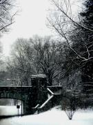 Black And White Photography Pyrography - Snow in Washington DC by Fareeha Khawaja