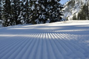 Bruster Photos - Snow is Groovy Man by Clayton Bruster