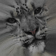 Snow Leopards Prints - Snow Leopard Painterly Print by Ernie Echols