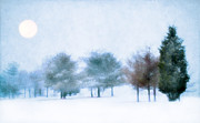 Blue Trees Prints - Snow Moon Print by Darren Fisher