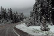 Snow On Road Through Forest Print by Linda Phelps