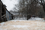 Winter Scenes Photos - Snow on the Farm by Lisa Moore