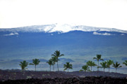 Mauna Kea Prints - Snow on the Mountain Print by Bette Phelan