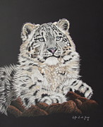 Scratchboard Paintings - Snow paws by Fay De Jong