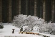 Winter Views Art - Snow Scene With The Neoclassic Columns by Steve Raymer